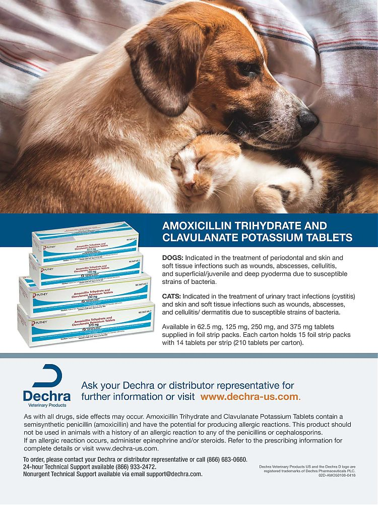 Animal Health - Adpharm