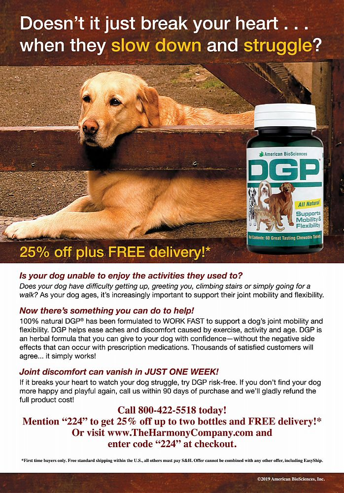 DGP_joint_support_for_pets---kw---Animal_Health_Category---Farm_and_Ranch_Living_-_December_2019__January_2020---dtc---USA---English---Print_Ad---pSP.jpg
