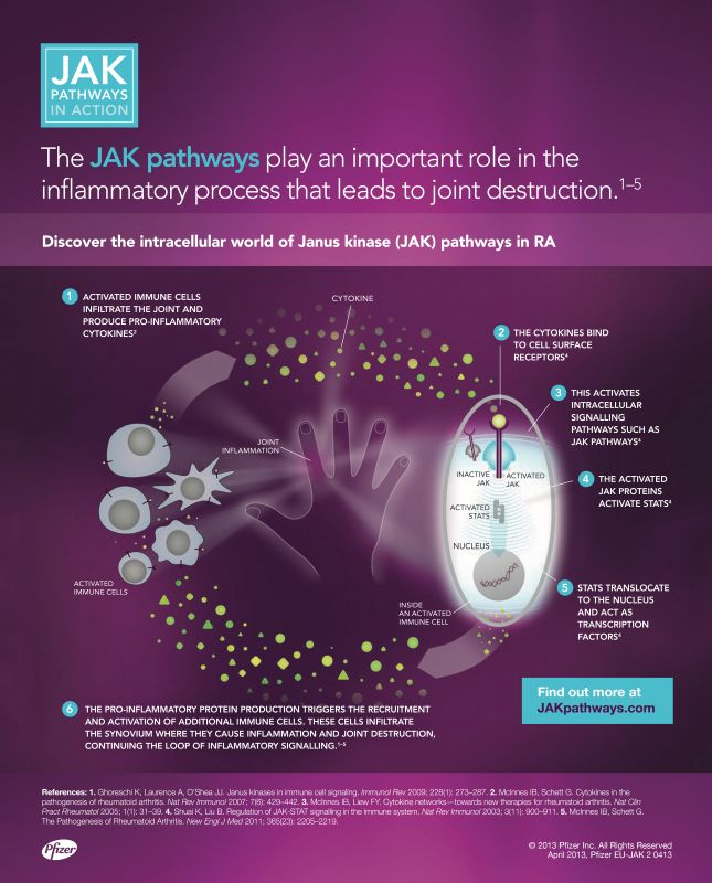 Jak_Pathways---kw---Healthcare_category---EULAR_Congress_News_-_June_14--2013---hcp---UK---English---Print_Ad---pSP.jpg