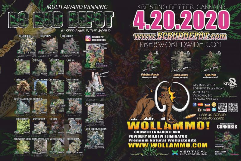 Wollammo---kw---Cannabis_Category---High_Times_-_April_2020---dtc---USA---English---Print_Ad---pDPS.jpg