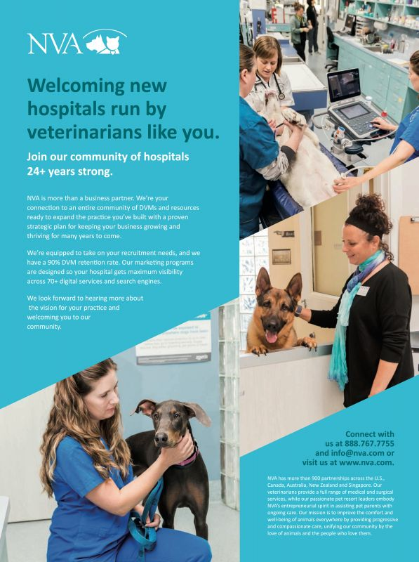NVA---kw---Animal_Health_Category---Clinician___s_Brief_-_September_2020---vet---Canada---English---Print_Ad---pSP.jpg