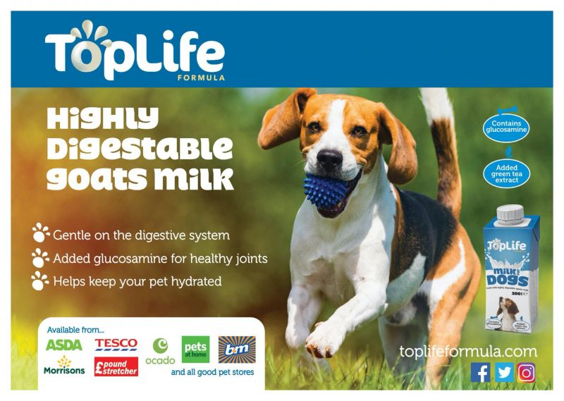 Toplife_Formula---Milk_for_Dogs---Animal_Health_Category---Our_Dogs_-_September_11--2020---dtc---UK---English---Print_Ad---pHP.jpg